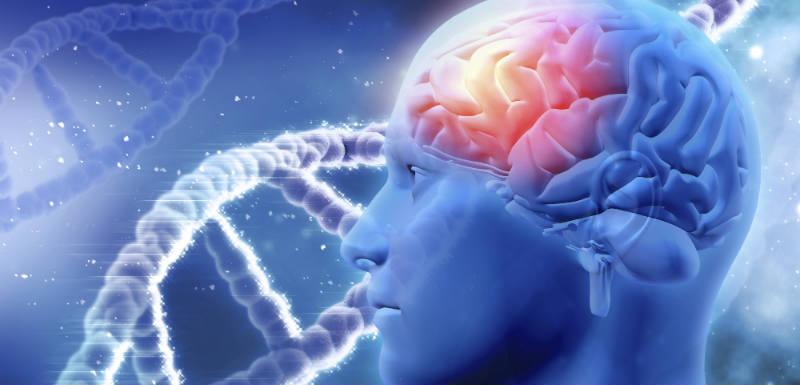 Schizophrénie : une nouvelle cause identifiée