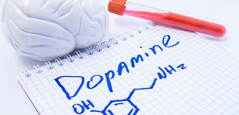 dopamine et antipsychotique