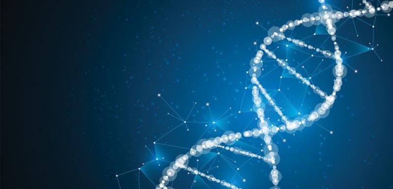 Gènes et traitement de la schizophrénie
